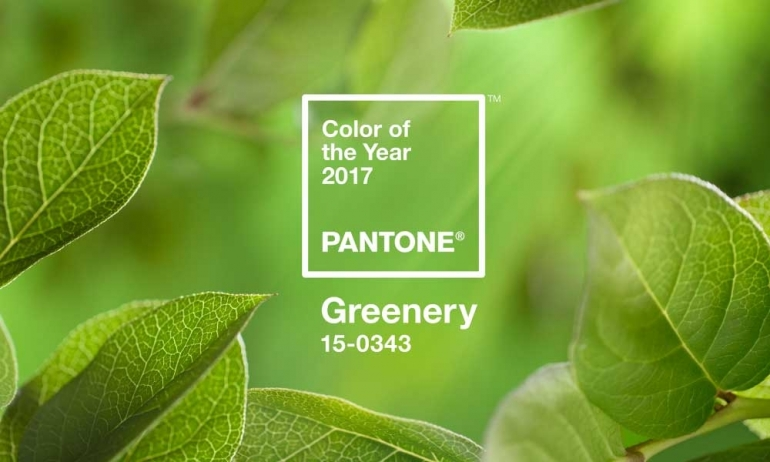 Pantone's Color of the Year 2017 Reveal