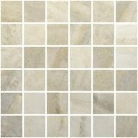 Evolution Sand 2x2 Mosaic AC69-206