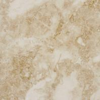 MSI Crema Cappuccino 12x12 Polished Marble Floor and Wall Tile TTCAPU1212P