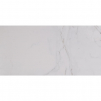 "Pietra Carrara 12"" x 24"" Polished Porcelain Field Tile NPIECAR1224P"