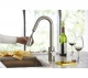 Danze Amalfi Single Handle Pull-Down Kitchen Faucet Stainless Steel
