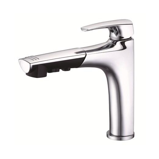 Danze Taju Single Handle Pull-Out Kitchen Faucet Chrome