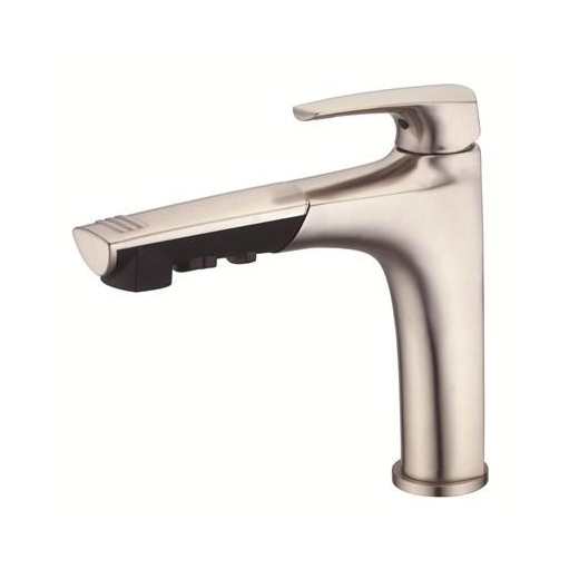 Danze Taju Single Handle Pull-Out Kitchen Faucet Stainless Steel