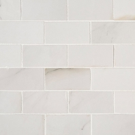 MSI Aria Bianco 2x4 Polished Subway Tile