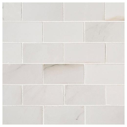 MSI Aria Bianco 2x4 Polished Subway Tile