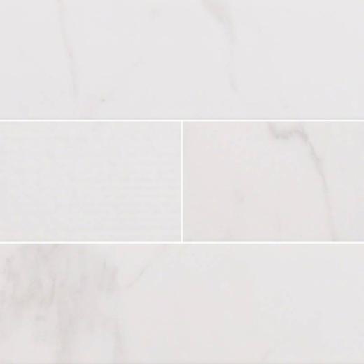 MSI Classique White Carrara 4x16 Mix Subway Tile