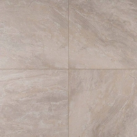 MSI Onyx Grigio 12x12 Ceramic Tile