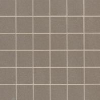 MSI Optima Olive 2x2 Polished Mosaic Tile