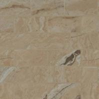 MSI Pietra Vezio Beige 2x4 Mosaic Tile