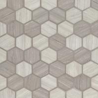 """MSI Silva Oak 2"""" Hexagon Tile"""