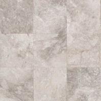 Limestone Siberian Tundra 12x12 Polished L701