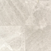 Limestone Arctic Gray 12x12 Honed L757