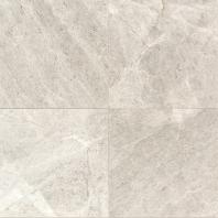Limestone Arctic Gray 12x12 Polished L757