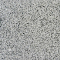 MSI Bianco Catalina 12x12 Tile