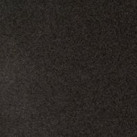 MSI Impala Black 12x12 Tile
