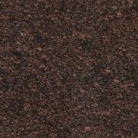 MSI Tan Brown 12x12 Tile