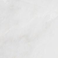 MSI Arabescato Carrara Tile
