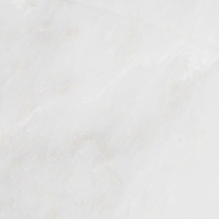 MSI Arabescato Carrara Tile Honed