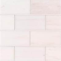 MSI Bianco Dolomite 3x6 Subway Tile