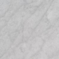 MSI Carrara White Honed Tile