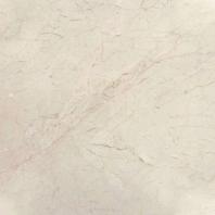 MSI Crema Marfil Classic Tile