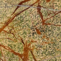 MSI Rain Forest Marble 12x12 Tile