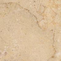 MSI Sahara Gold 12x12 Polished Tile