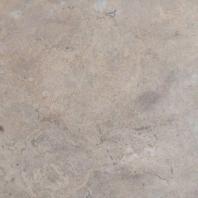 MSI Silver Travertine Honed Tile