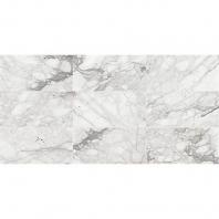 Marble Venetian Calacatta Polished 12x12 M474