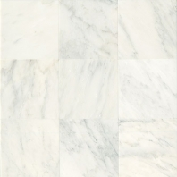 Marble First Snow Elegance 12x12 Honed M190