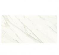 Florentine 12x24 Polished Tile FL061224WX1P