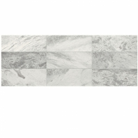 Raine Stratus White 3x9 Marble Subway Tile Polished