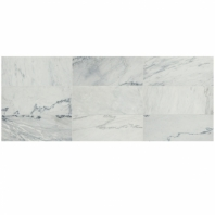 Raine Cirrus Storm 3x9 Marble Subway Tile Honed