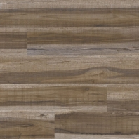 Cyrus Series Exotika Luxury Vinyl Tile