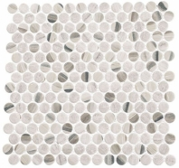 Pixels Dusted Ash Beige Wood Look Penny Round Tile PX781