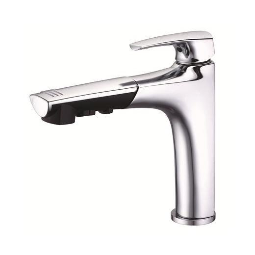 Buy Danze Sirius Series Two Handle Kitchen Faucet with Spray