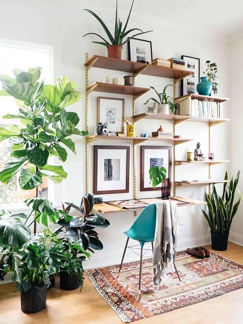 home-decor-boho-bohemian-plants-rug-prints-frames
