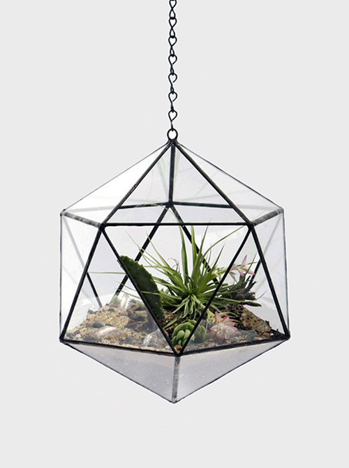 bright-airy-geo-glass-hanging-terrarium