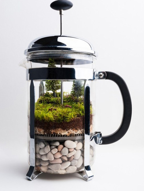 coffeepress-upcycle-reused-recycled-glass-terrarium