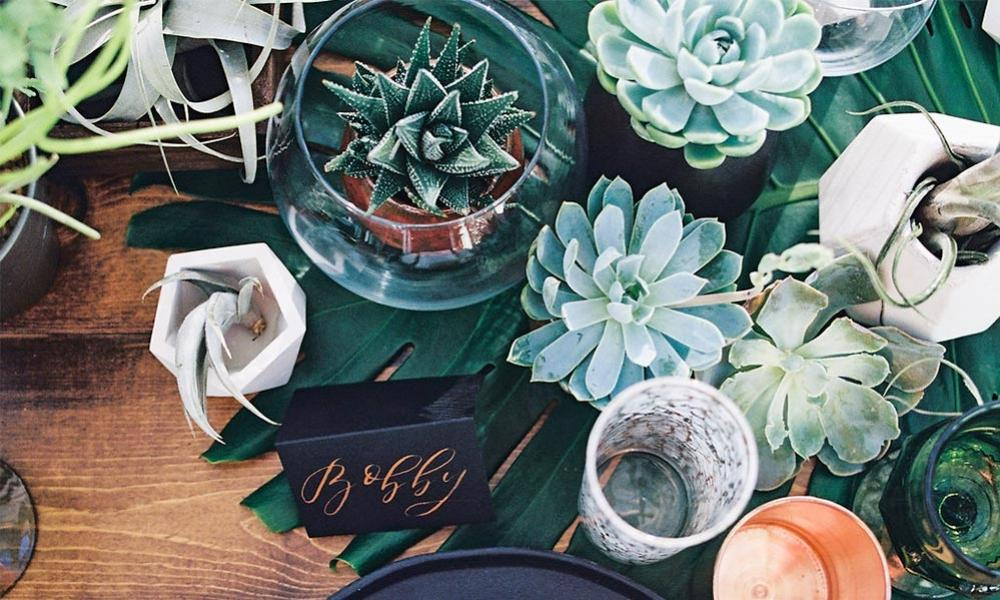 5 Home Decor Inspirations Using Succulents & Terrariums